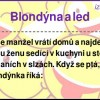 Blondýna a led