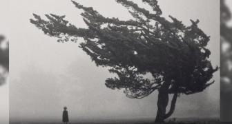 100 najstrašidelnejších paranormálnych záberov na fotografiách