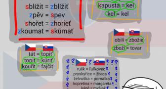 Čeština VS slovenčina