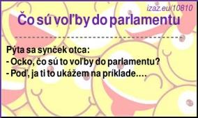 Čo sú voľby do parlamentu