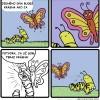 Krása motýľa a húsenice