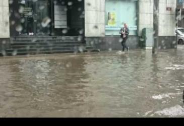 Muž zachráni mačiatko zo zatopenej ulice