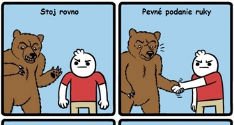 Čo robiť, keď vás napadne medveď