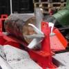 Primitívna technológia VS megastroje: Sekáč, píla, štiepačka dreva, nezvyčajné tesárstvo v píle