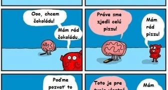 Rozum vs srdce