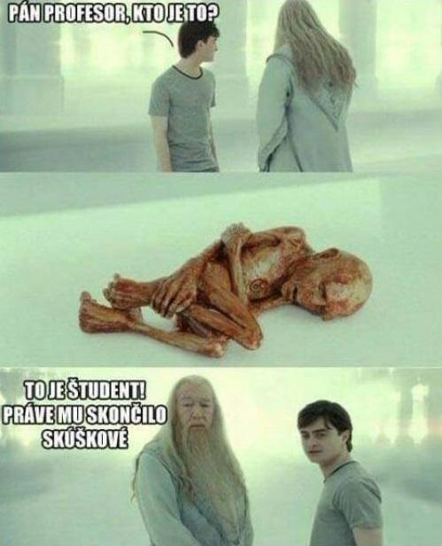 Dumbledore, Potter a študent po skúškovom