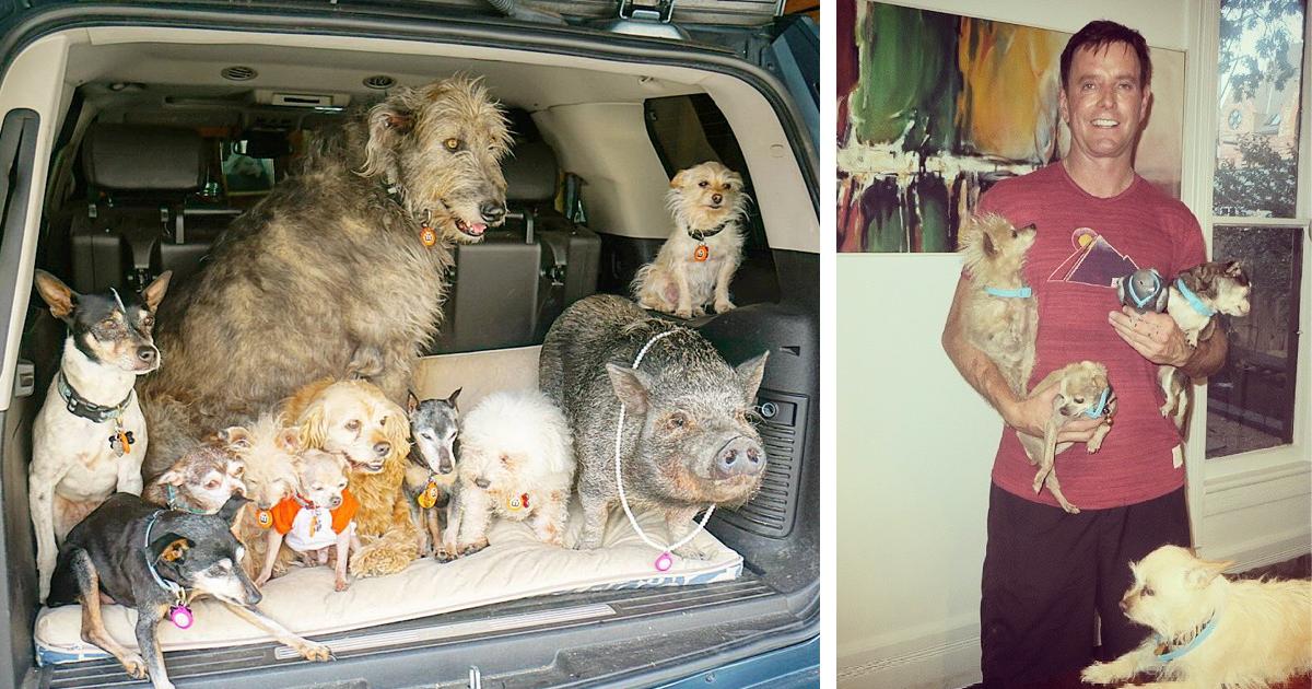 Muž zasvätil svoj život psom, ktoré už nikto nechcel