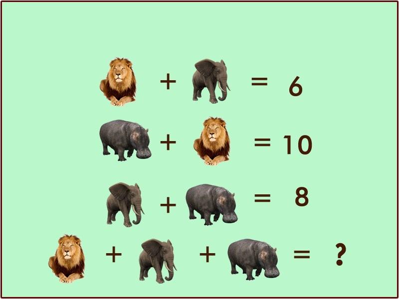 Zvieracia rovnica: Obrázková hádanka